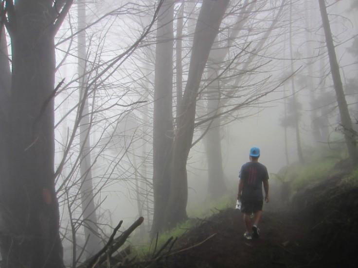 Polipoli Trails on Maui-Foggy Forest Hike-IMG_4897