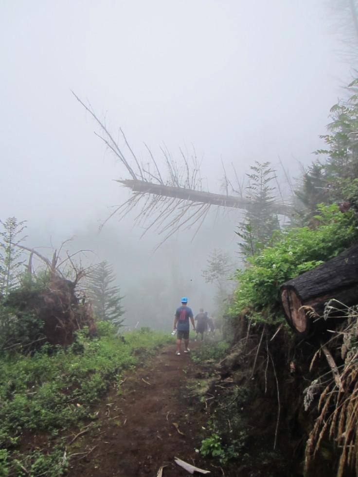 Polipoli Trails on Maui-Foggy Forest Hike-IMG_4904