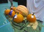 maui fair_pumpkins