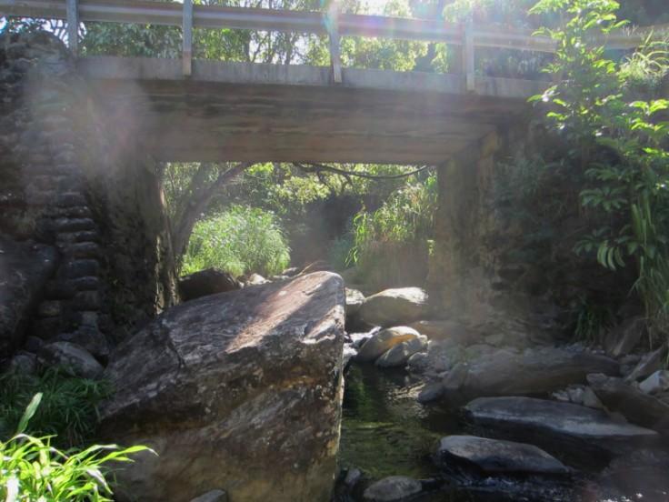 makamakaole, stream, waterfall, maui, hawaii, nature, adventure, waihee, banyan tree