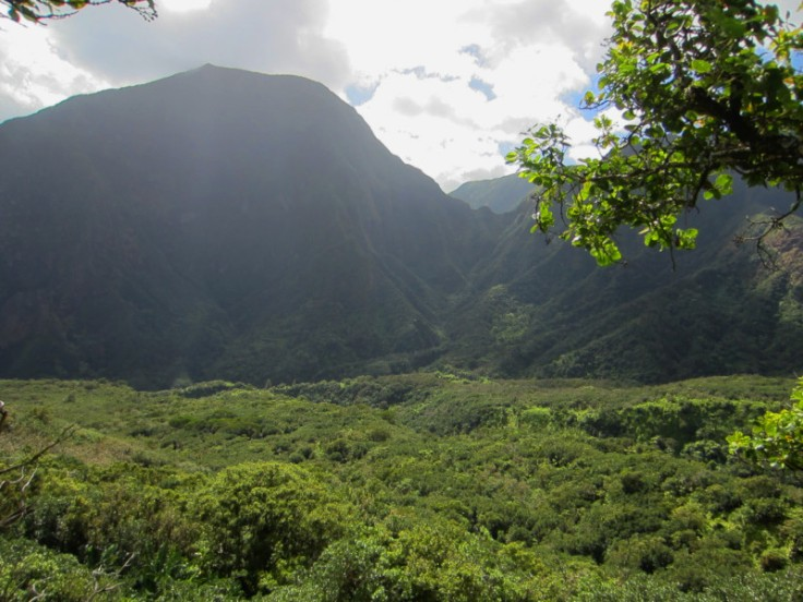 Iao Valley Ridge_13