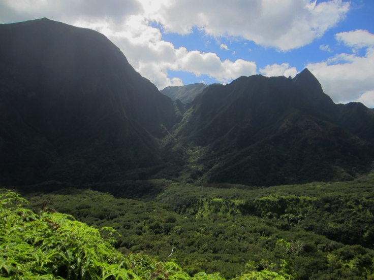 Iao Valley Ridge_17.JPG