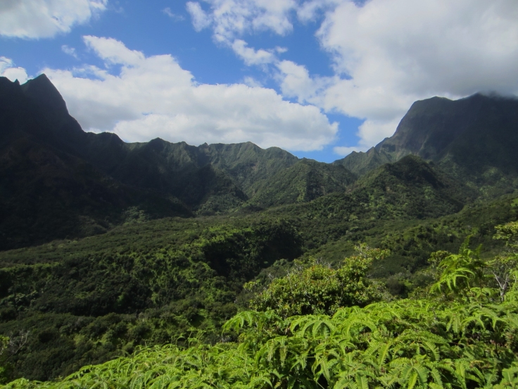 Iao Valley Ridge_18.JPG