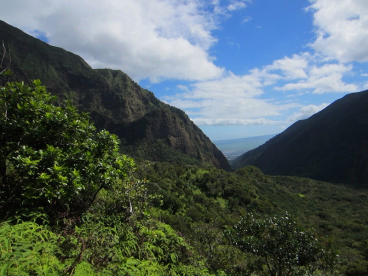 Iao Valley Ridge_19