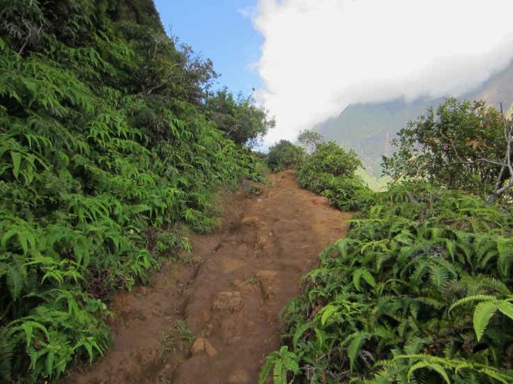 Iao Valley Ridge_5