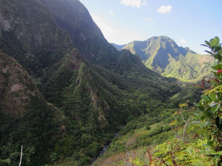 Iao Valley Ridge_7.JPG