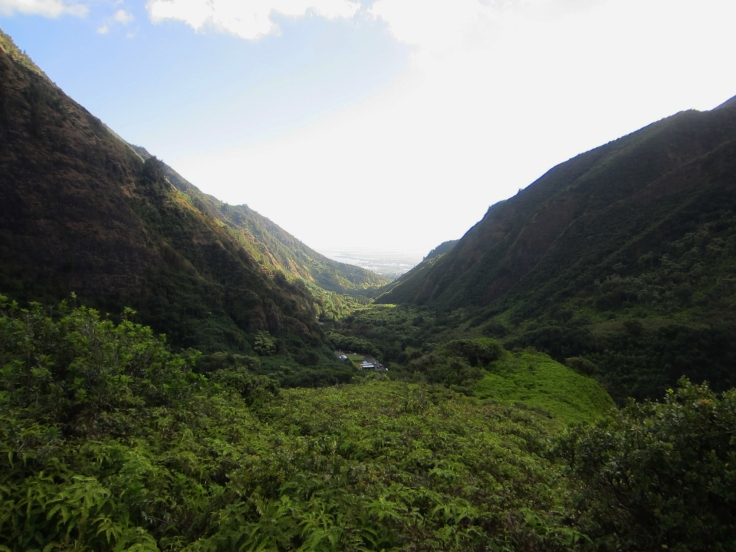 Iao Valley Ridge_8