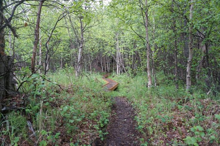 Crow Pass Trail_17.JPG