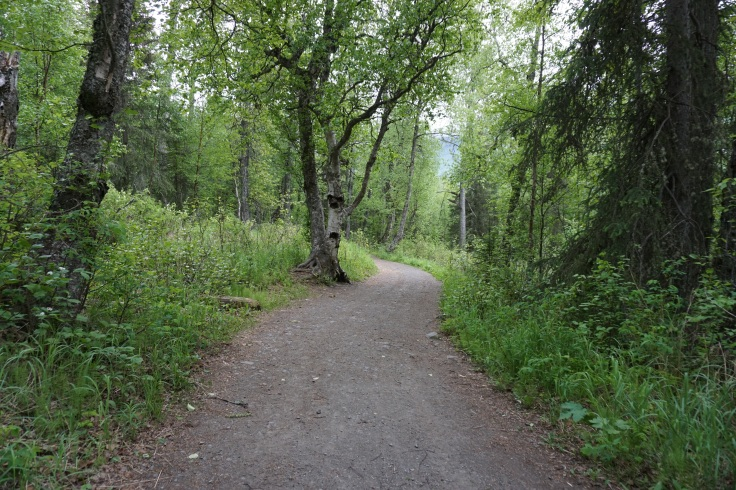 Crow Pass Trail_5.JPG