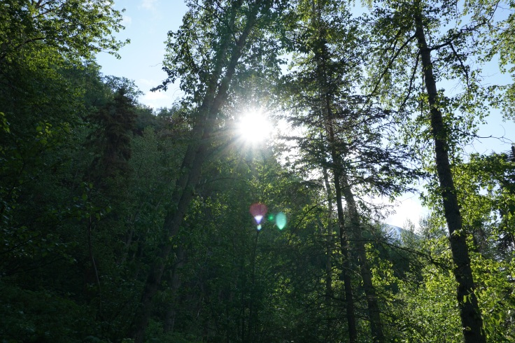 Crow Pass Trail_57.JPG