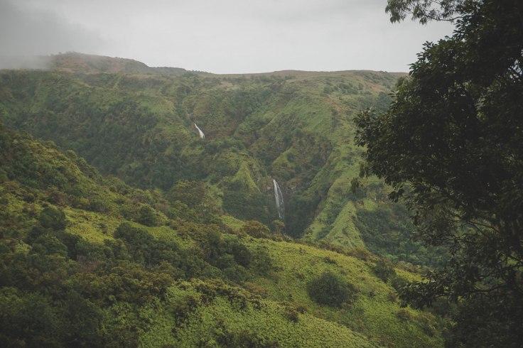 Waihee Ridge Trail_10.jpg