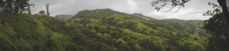 Waihee Ridge Trail_11