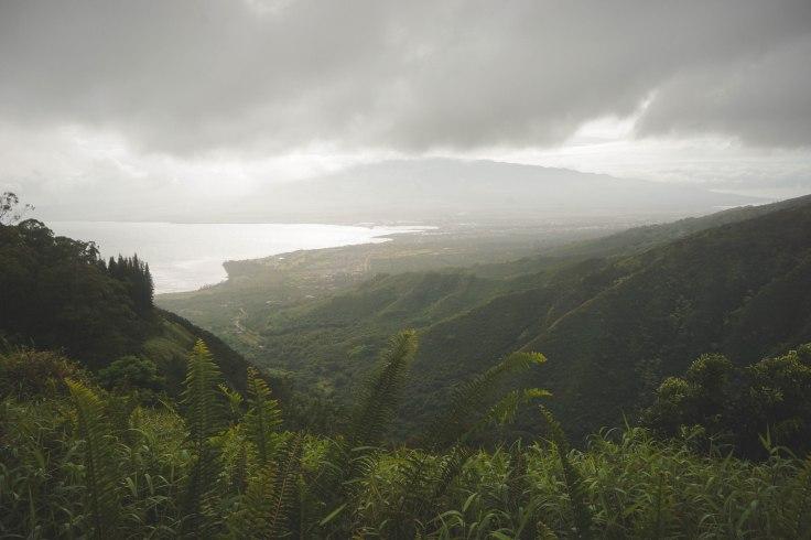 Waihee Ridge Trail_13