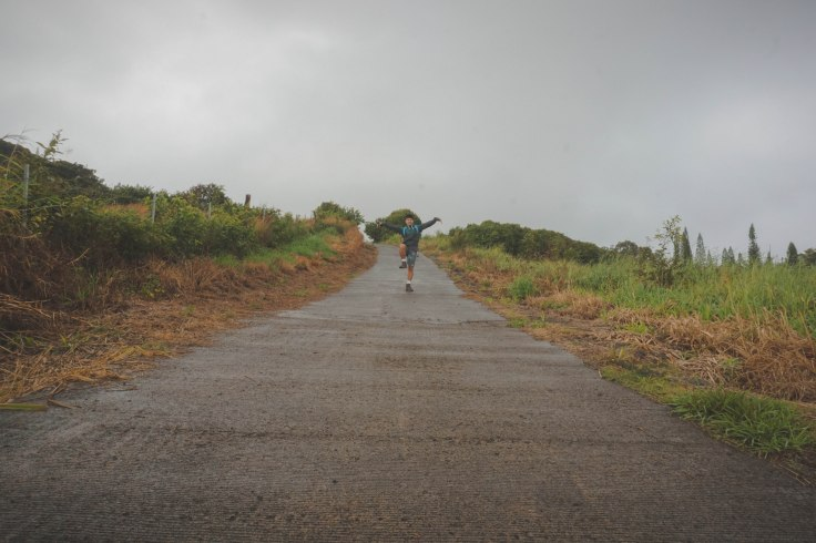 Waihee Ridge Trail_2