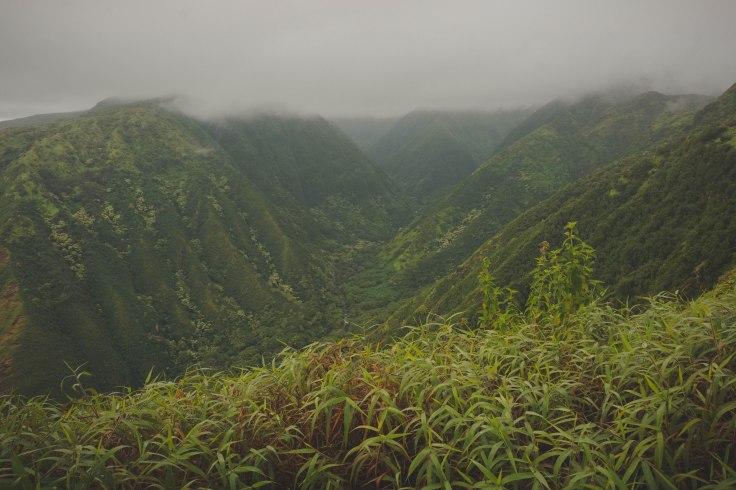 Waihee Ridge Trail_24.jpg
