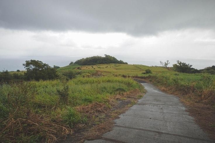 Waihee Ridge Trail_3