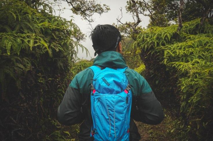 Waihee Ridge Trail_36