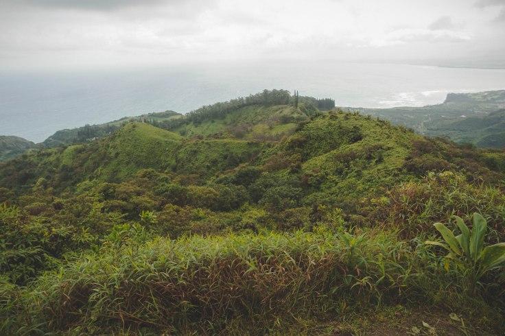 Waihee Ridge Trail_39.jpg