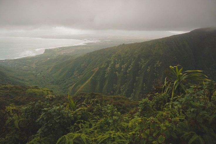 Waihee Ridge Trail_54.jpg