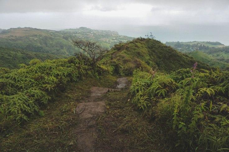 Waihee Ridge Trail_56.jpg